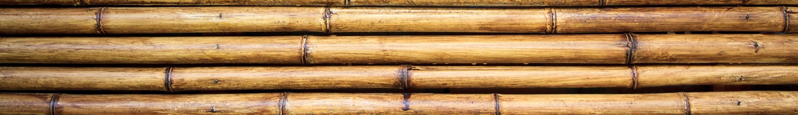 Nursery - Bamboo Stakes